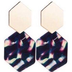 Multicolor Tortoise Shell Statement Earrings